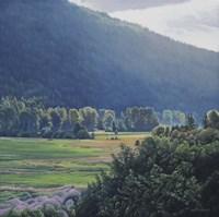 St Marys Valley Fine Art Print