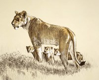Lioness And Cubs Fine Art Print