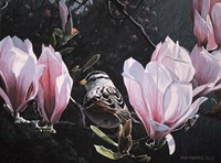 Sparrow In Magnolia Fine Art Print