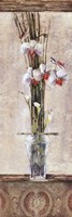 Zen Orchid I Fine Art Print