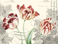 Imperial Tulips Fine Art Print