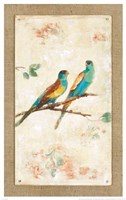 Hooded Parrot Fine Art Print