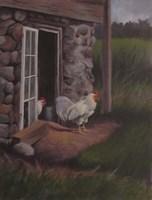 Top Rooster Fine Art Print
