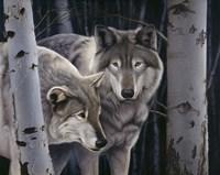 Wolves Fine Art Print