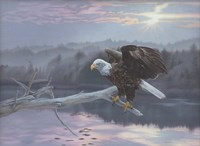 The Huron Eagle Fine Art Print