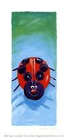 Bugs IV Framed Print