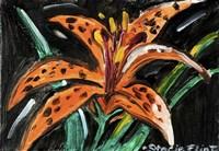 Tiger Lily Fine Art Print