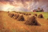 Harvest Blessings Fine Art Print
