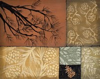 Pine Cones 4 Fine Art Print