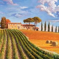 Colline Toscane (Detail) Fine Art Print