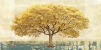 Gilded Oak Fine Art Print