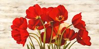 French Tulips Fine Art Print