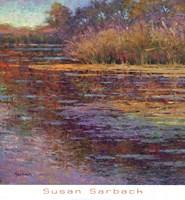 Sunlit Pond 1 Fine Art Print