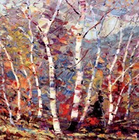 Birch Colors 2 Fine Art Print