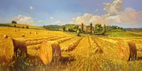 Campo in Toscana Fine Art Print