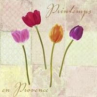Printemps en Provence Fine Art Print