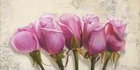 Royal Roses Fine Art Print