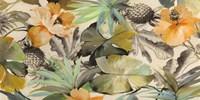 Wild Ibiscus Fine Art Print