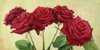 Rose Rosse Fine Art Print