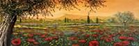 Pianura in Fiore II Fine Art Print