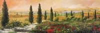 Il Viale dei Cipressi Fine Art Print