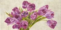 Tulipes II Fine Art Print