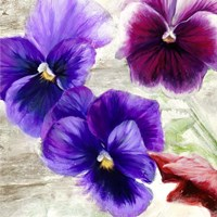 Pansies II Fine Art Print