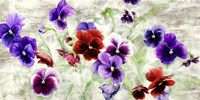Field of Pansies Fine Art Print
