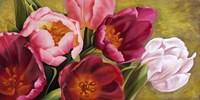 My Tulips Fine Art Print