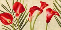 Red Callas Fine Art Print