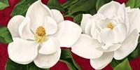 Magnolie in Fiore Fine Art Print