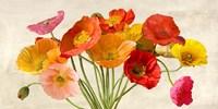Poppies in Spring Fine Art Print