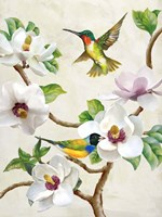 Magnolia and Birds Fine Art Print