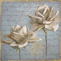 Seed Pod II Fine Art Print