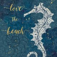 Coastal Lace VII Fine Art Print