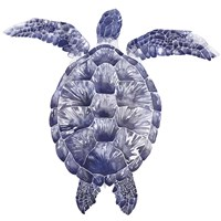 Marine Turtle I Fine Art Print