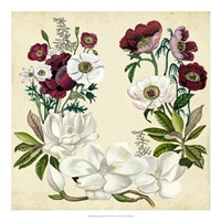 Magnolia & Poppy Wreath I Framed Print