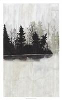 Pine Island II Fine Art Print