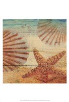 On Sandy Beach II Fine Art Print