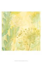 Florid Garden I Fine Art Print