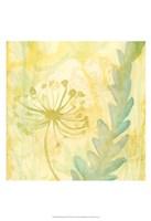 Florid Garden II Fine Art Print