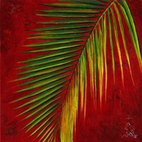 Palmas En Fuego III Fine Art Print