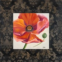 Poppy Flower II Framed Print