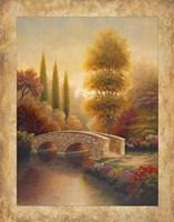 Into Viola Fine Art Print