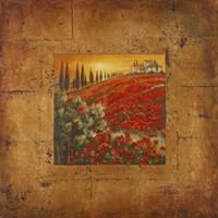 Bella Toscana II Framed Print