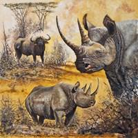 Safari I Fine Art Print