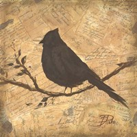 Bird Silhouette II Fine Art Print