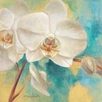 Spring into Summer II Fine Art Print