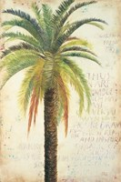 Palms & Scrolls II Fine Art Print