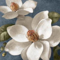 Magnolias on Blue I Fine Art Print